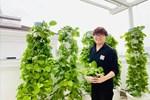 MC Đại Nghĩa chia sẻ bí quyết trồng rau thủy canh trên sân thượng đúng cách