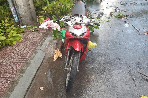 TP.HCM: Cây xanh ngã đổ ra đường, đè trúng tài xế Gojek đang chở khách nữ lưu thông-2