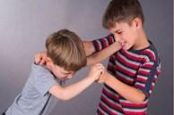 Con trai liên tục bị bạn cùng lớp bắt nạt, người cha tung chiêu độc giúp cậu bé lật ngược tình thế