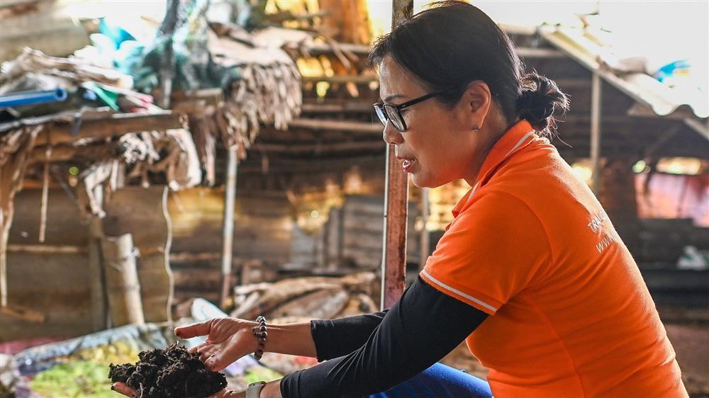 Nữ thiếu tá về hưu nuôi giun quế thu gần 6 tỷ mỗi năm-2