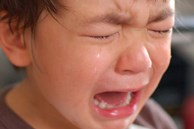 Sự khác biệt lớn giữa trẻ hay khóc và trẻ kìm nén không khóc bao giờ, nghe xong cha mẹ sẽ muốn ngừng ngay việc trách trẻ
