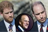 Hoàng tử William và em trai Harry cùng lên tiếng trước sự ra đi của ông nội – cố Hoàng thân Philip trong chia sẻ đầy xúc động