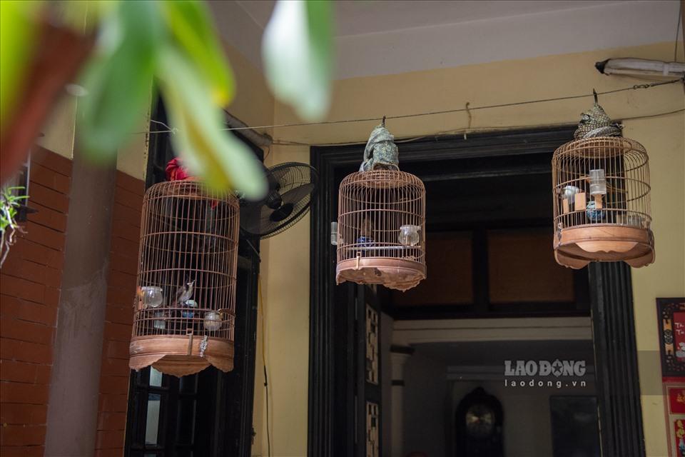 Nhà vườn 300m2 tại phố cổ Hà Nội: Đại gia trả giá 180 tỉ cũng không bán-5