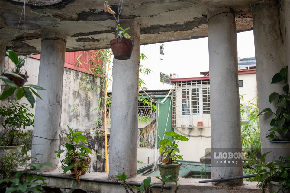 Nhà vườn 300m2 tại phố cổ Hà Nội: Đại gia trả giá 180 tỉ cũng không bán-10