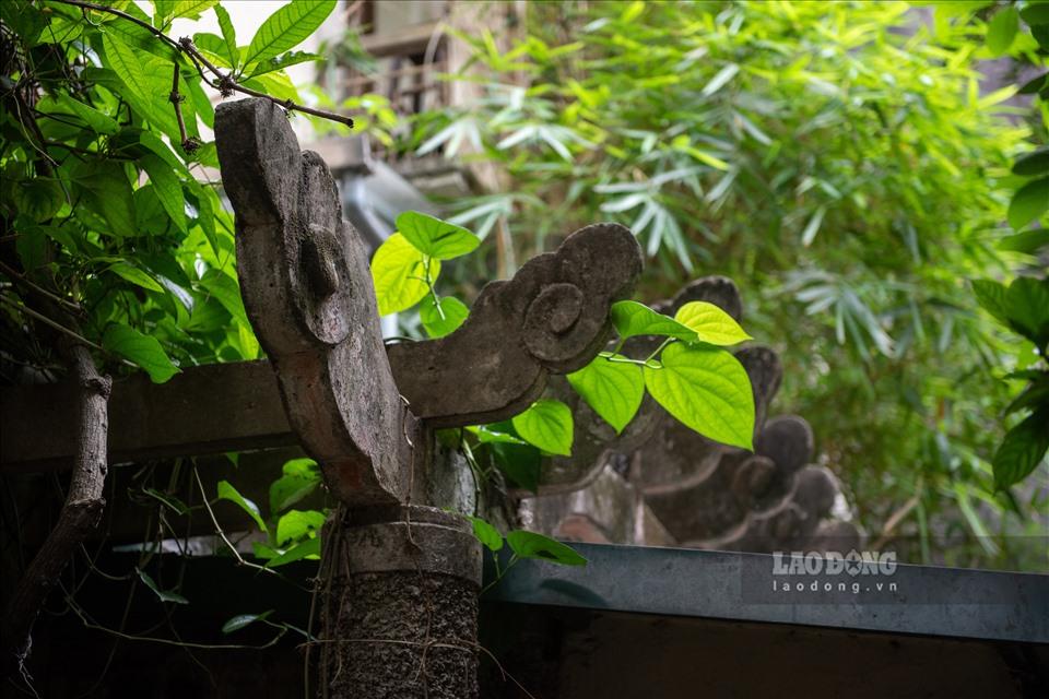 Nhà vườn 300m2 tại phố cổ Hà Nội: Đại gia trả giá 180 tỉ cũng không bán-15