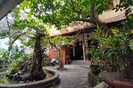 Nhà vườn 300m2 tại phố cổ Hà Nội: Đại gia trả giá 180 tỉ cũng không bán