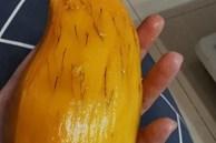 Xoài nổi chỉ đen 'như lông chân', ăn vẫn thấy ngon nhưng có hại sức khỏe không? Đây là câu trả lời của chuyên gia