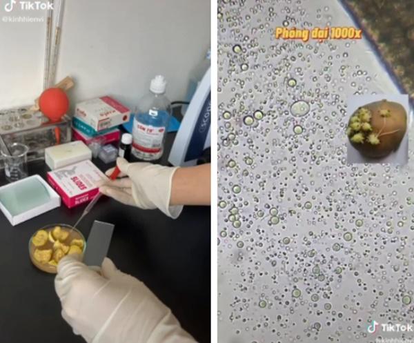 2 thói quen khi ăn cà muối rất nguy hiểm các gia đình Việt cần từ bỏ ngay vì có thể gây ngộ độc thực phẩm-1