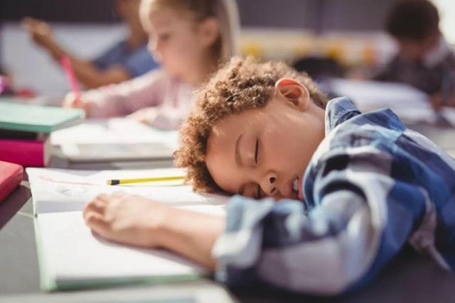Cha mẹ bất lực vì thói quen lười biếng và trì hoãn kinh điểncủa con cái mà không biết lỗi lớn từ chính bản thân mình-2