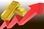Giá vàng tăng vọt lên đỉnh, thị trường bùng nổ-2