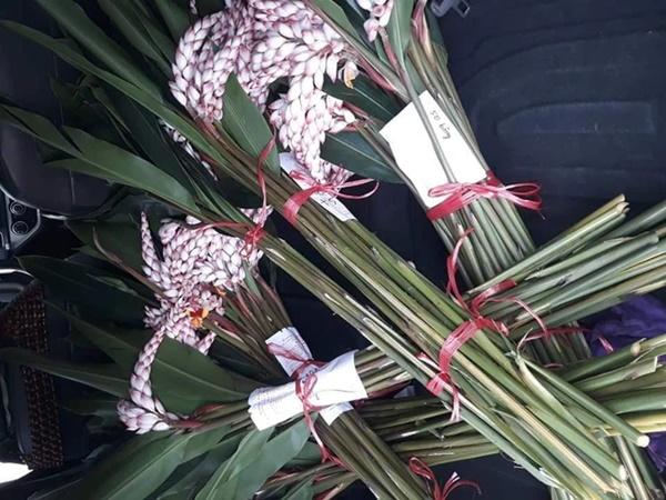 """Hoa rừng đẹp như bông lúa mẩy hạt gây sốt"""", bán chơi mà được cả nghìn cành-2"""