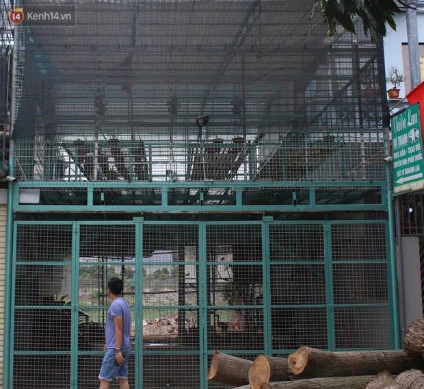 Thông tin bất ngờ vụ chủ vườn hoa lan đột biến ở Hà Nội bị tố ôm hàng trăm tỷ bỏ trốn-1