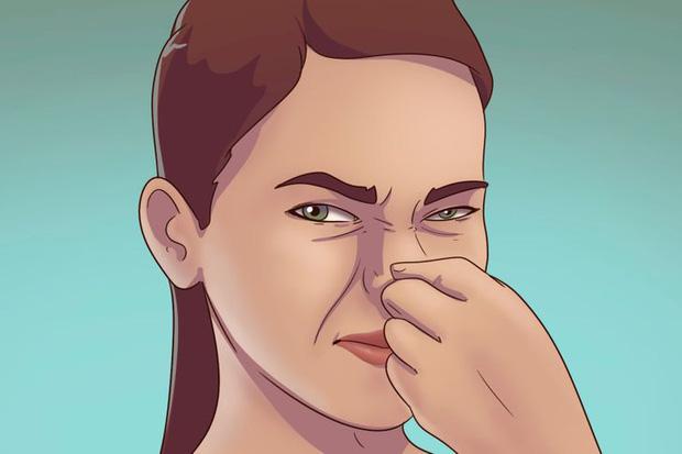 5 dấu hiệu cho thấy rệp đang làm tổ trong nhà của bạn, hãy cẩn thận-3