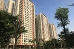 Mua chung cư cao cấp 4,2 tỷ cho thuê, sau 5 năm rao 2,8 tỷ không ai hỏi-2