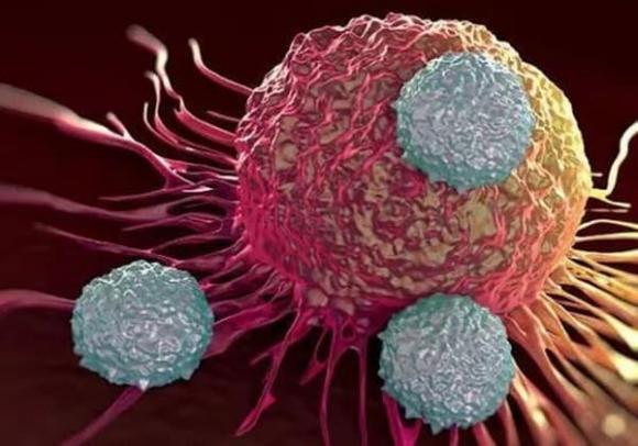 Nếu ai có 4 đặc điểm này, có thể bạn đã miễn dịch với bệnh ung thư, xin chúc mừng!-1