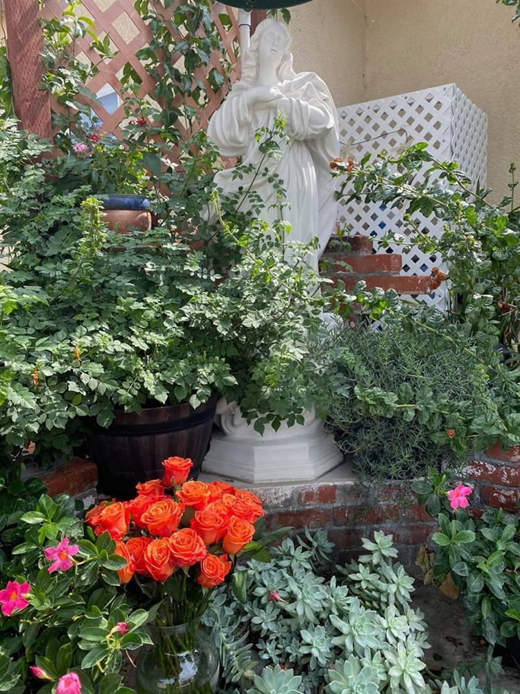 Cách bài trí sân vườn tươi mát và nhiều hoa của danh ca Hương Lan-2