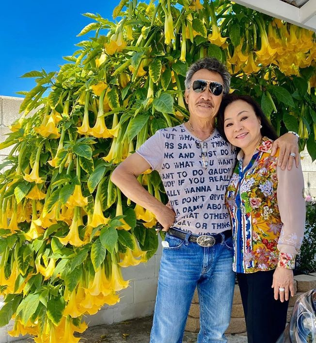 Cách bài trí sân vườn tươi mát và nhiều hoa của danh ca Hương Lan-8