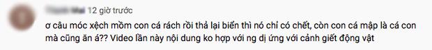 Tranh cãi việc nhà Quỳnh Trần JP ra biển câu cá mập con để ăn, cảnh máu me cũng được đưa ngay lên video-12