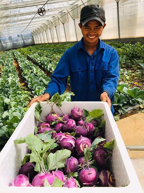 Lý Nhã Kỳ thu hoạch trái cây, hoa và rau củ trong khu vườn 50 ha ở Đà Lạt-5