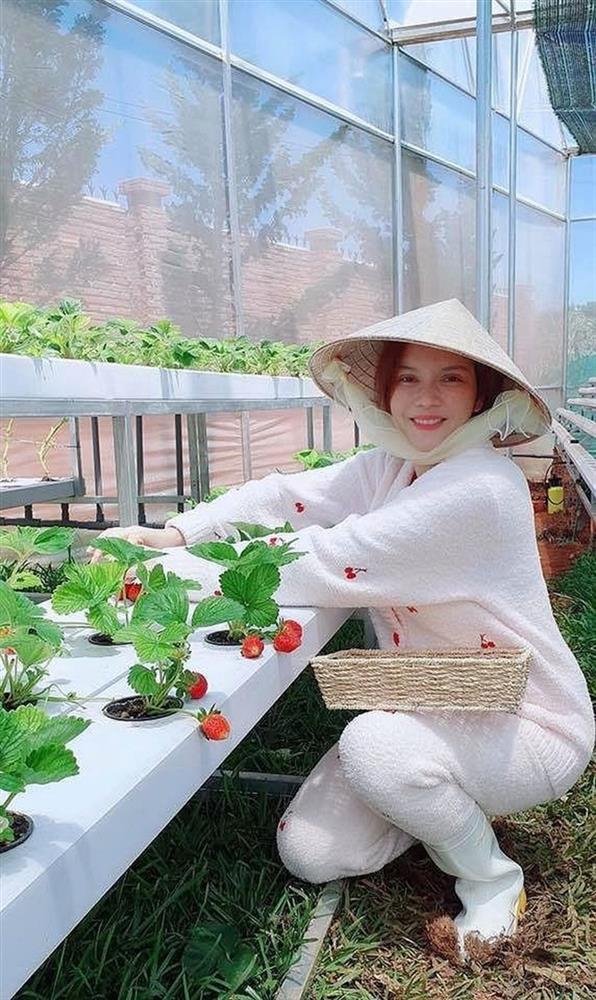 Lý Nhã Kỳ thu hoạch trái cây, hoa và rau củ trong khu vườn 50 ha ở Đà Lạt-8