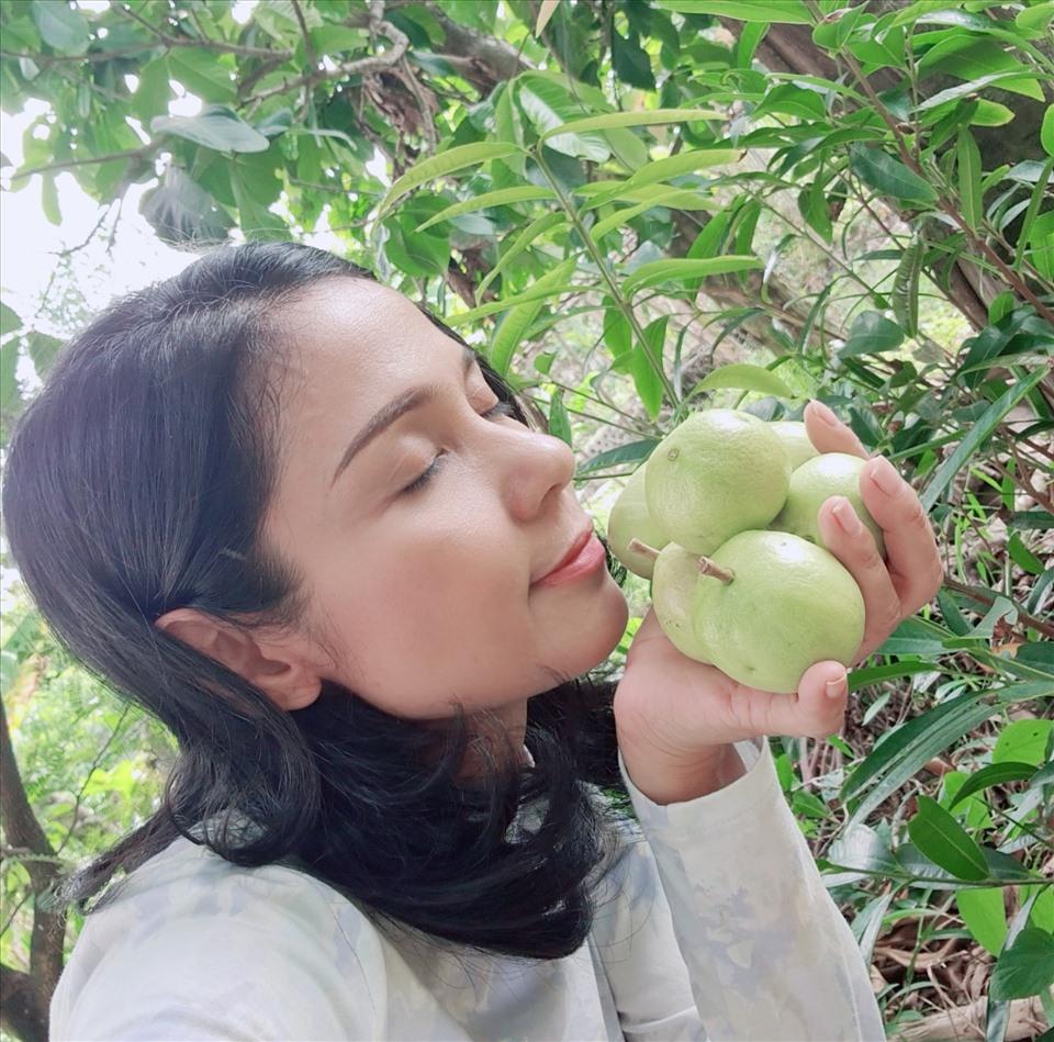 Cùng Việt Trinh đi thu hoạch nhiều loại trái cây trong vườn 2.500m2-3