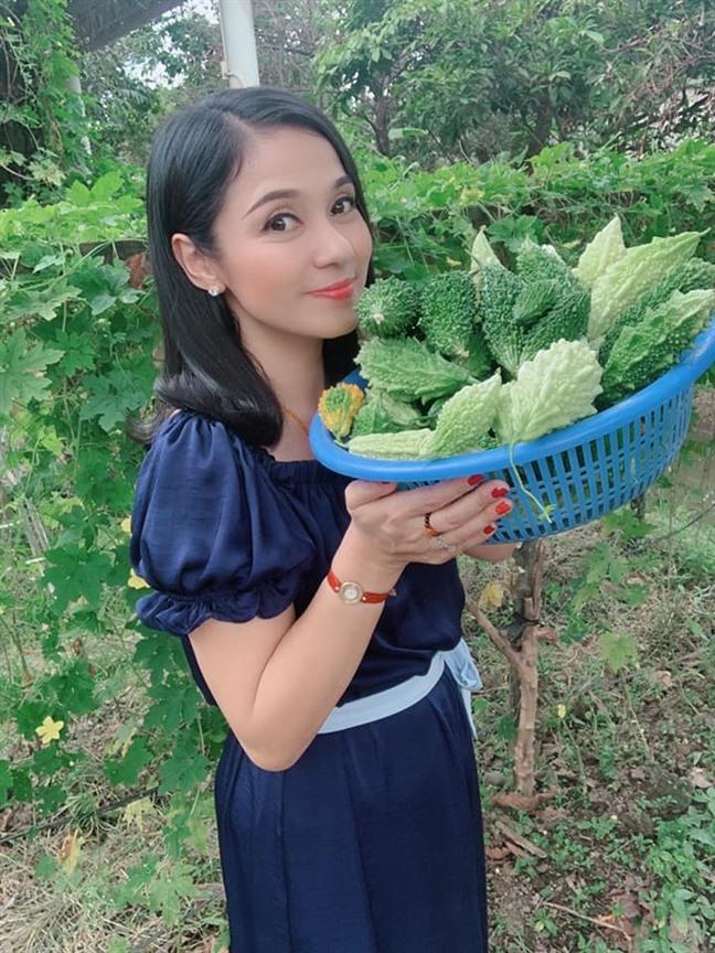Cùng Việt Trinh đi thu hoạch nhiều loại trái cây trong vườn 2.500m2-9