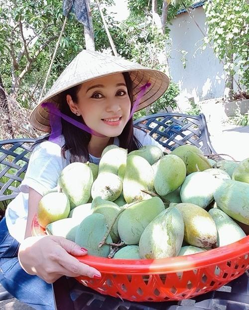 Cùng Việt Trinh đi thu hoạch nhiều loại trái cây trong vườn 2.500m2-11
