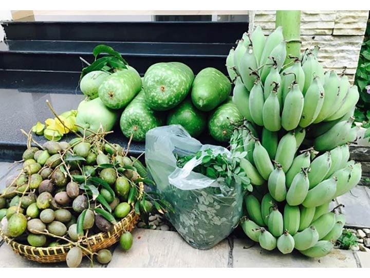 Cùng Việt Trinh đi thu hoạch nhiều loại trái cây trong vườn 2.500m2-14