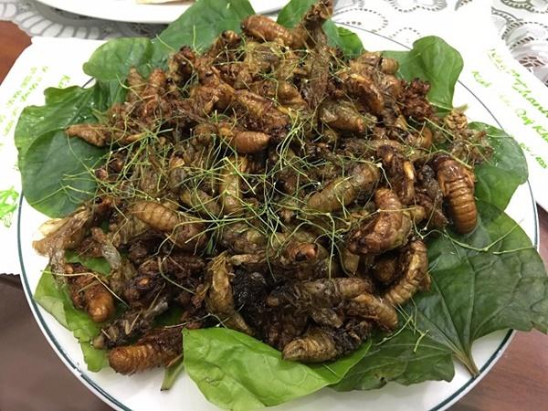 Loại côn trùng ẩn náu cả chục năm dưới lòng đất, lên bàn nhậu có giá nửa triệu đồng/kg-4