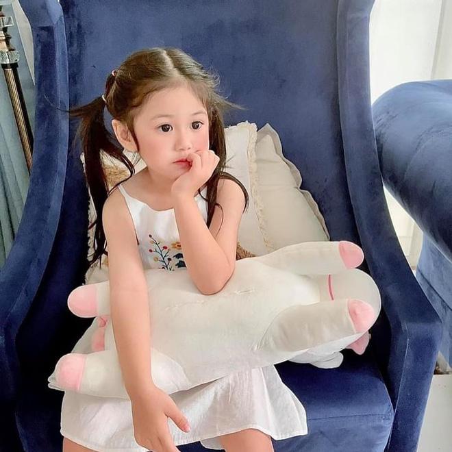 Bị netizen nói đẻ con gái sau này con rể ăn hết, nữ đại gia có căn biệt thự gần 200 tỷ đáp trả căng đét-3