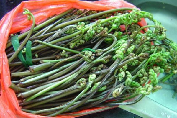 3 loại rau củ chứa độc tố nguy hiểm, ăn nhiều còn có thể gây ung thư gan, ung thư dạ dày-3