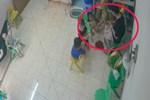 Clip: Cô giáo mầm non đánh, dúi đầu bé gái ngã ngửa ra sàn gây phẫn nộ