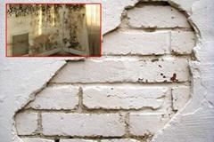 Tường ẩm mốc và nứt nẻ đừng tốn tiền để gọi thợ sửa, học ngay 4 mẹo này sẽ giải quyết trong 3 phút, tường 10 năm vẫn như mới
