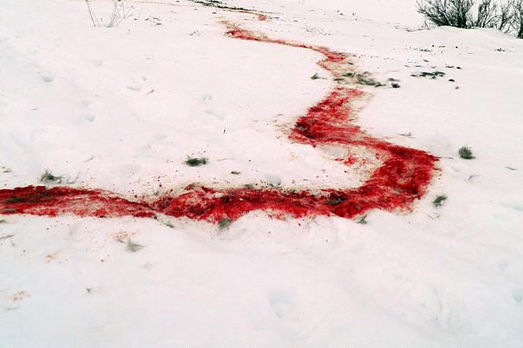 Hai mẹ con bị mắc kẹt trong băng tuyết, mạng sống của đứa con được cứu bằng hành động khó tưởng tượng này của người mẹ-6