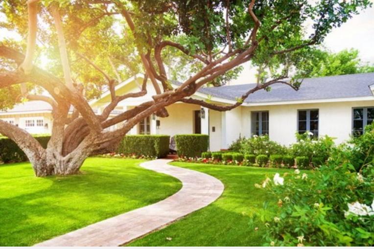 10 cách làm mát nhà mà không cần điều hòa, vừa đơn giản lại tiết kiệm chi phí, đem lại hiệu quả cao-8