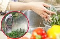 Top 10 loại thực phẩm tồn dư thuốc bảo vệ thực vật nhiều nhất chúng ta vẫn ăn hàng ngày