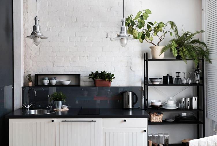 8 loại cây cảnh nên trồng trong nhà bếp vì có khả năng lọc không khí và khử mùi cực tốt-8