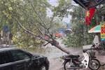 Ảnh, clip: Mưa dông gió giật kèm sấm chớp kinh hoàng ập xuống giờ tan tầm, Hà Nội ngập khắp các tuyến đường-41