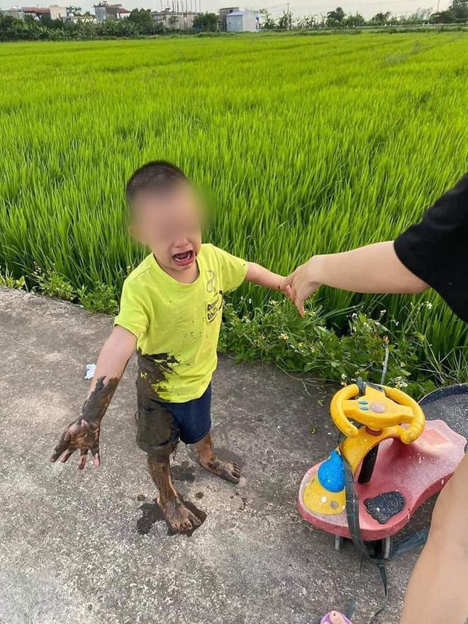 Được chị dắt đi chơi, cậu bé ngã lộn cổ xuống ruộng, hình ảnh sau đó khiến người ta không nhịn được cười-6