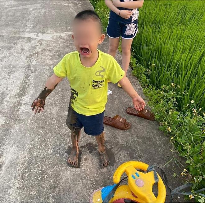 Được chị dắt đi chơi, cậu bé ngã lộn cổ xuống ruộng, hình ảnh sau đó khiến người ta không nhịn được cười-7