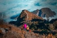 Biển mây kỳ ảo trên đỉnh Bạch Mộc Lương Tử