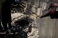 Tro cốt vô thừa nhận: Nỗi ám ảnh kinh hoàng của 'địa ngục Covid' Ấn Độ