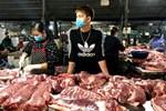 Giá lợn hơi giảm kỷ lục, người nuôi lao đao-2
