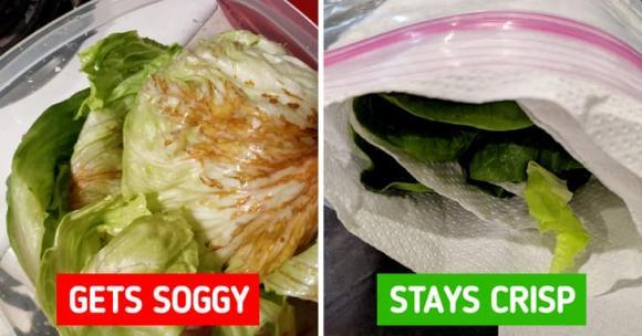 Mách nhỏ 8 cách để giữ cho thực phẩm của bạn được tươi lâu hơn-1