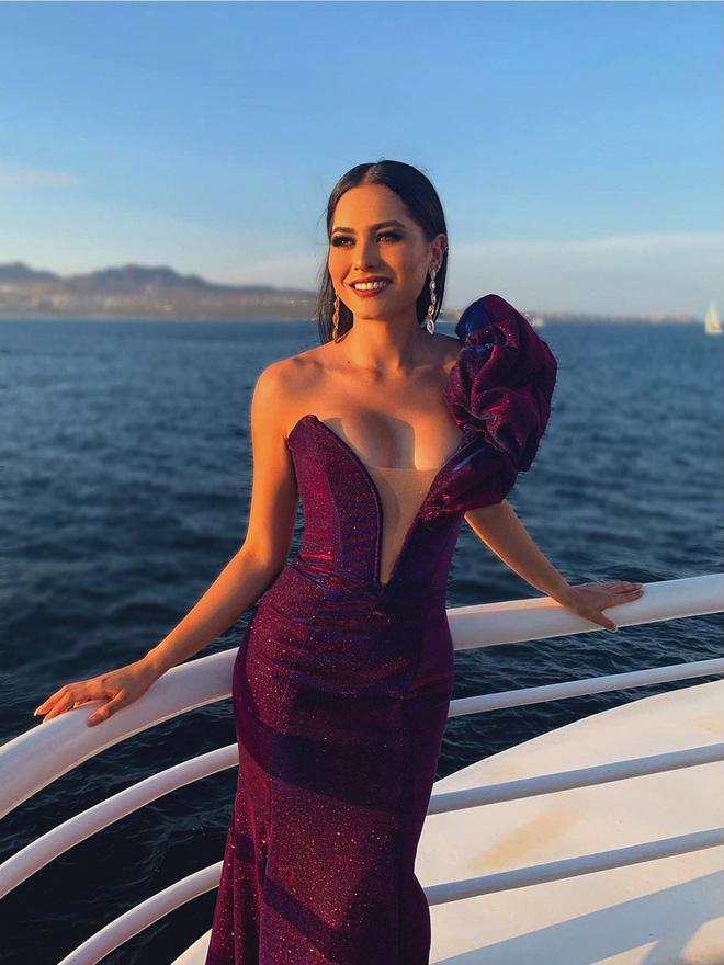 Tân Hoa hậu Hoàn Vũ thế giới 2020 đánh bại 73 mỹ nhân khắp thế giới nóng bỏng cỡ nào?-10