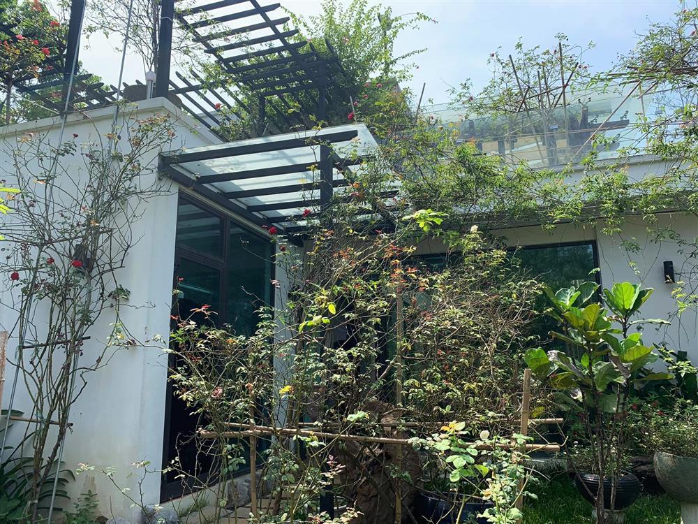 Cận cảnh khu vườn trong căn biệt phủ ngoại ô của hot mom Văn Thùy Dương, trồng được cả loại ớt đắt nhất thế giới có giá gần 1 tỷ đồng/kg-9