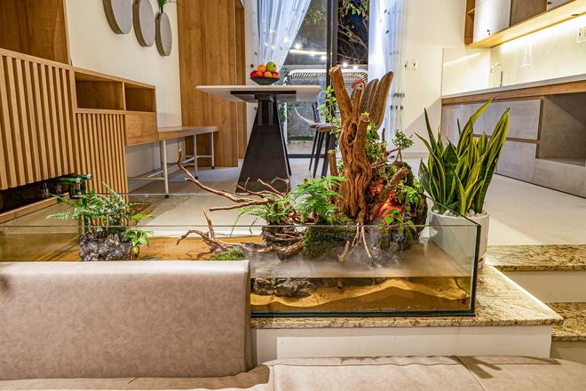 Có mảnh đất 75m2, vợ chồng Đà Nẵng xây nhà cực khéo: Trong nhà nghe tiếng nước chảy, ngoài vườn nghe tiếng chim hót-8