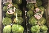 Bay từ Australia về Việt Nam, bắp cải tí hon được 'hét giá' 400.000 đồng/kg