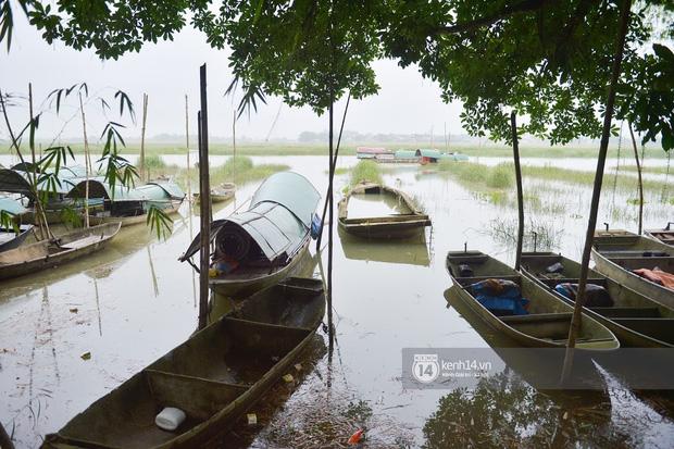 Người dân vùng lũ Hà Tĩnh nói về khoản 13,7 tỷ quyên góp của NS Hoài Linh: Khi nước rút được vài ngày là lúc chúng tôi cần cứu trợ nhất, một nắm khi đói bằng một gói khi no-12