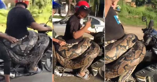 Người đàn ông gây xôn xao MXH với màn chở bé Na 200kg dạo phố, tưởng làm chuyện để ý câu view nhưng lại là hành động đầy tốt bụng-3